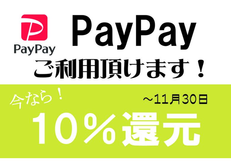 今ならPayPay利用で【10%還元】!11月30日まで